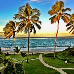 Cabarete Beach, Dominican Republic. Hi<3 Can't wait to see you!