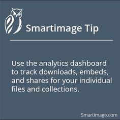 Monitor how people are using your collections and files #Smartimage #ImageManagement #Analytics
