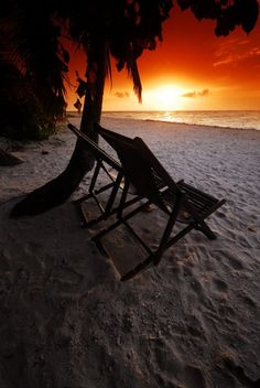 """""""If your eyes are blinded with your worries, you cannot see the beauty of the sunset."""" ~Jiddu Krishnamurti"""