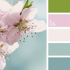 Spring colors inspiration. Color combination, color pallets, color palettes, color scheme, color inspiration.: