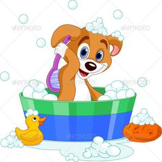 Realistic Graphic DOWNLOAD (.ai, .psd) :: http://jquery.re/pinterest-itmid-1004759434i.html ... Dog Having a Bath ...  adorable, animal, bath, brush, bubbles, bucket, cartoon, character, clean, clip art, clip-art, cute, dog, domestic, grooming, health, hygiene, hygienic, illustration, mammal, pet, puppy, soap, water, wet  ... Realistic Photo Graphic Print Obejct Business Web Elements Illustration Design Templates ... DOWNLOAD :: http://jquery.re/pinterest-itmid-1004759434i.html