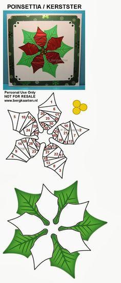 Irisvouwen: Poinsettia