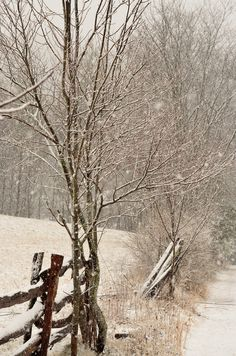 Beautiful winter scene in Boone NC.  If you are interested in purchasing a print check out martinasimages.com