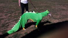 dog S nantlle Halloween Costumes Pop Culture, Family Halloween Costumes, Halloween Ideas, Cute Animal Quotes, Cute Animal Videos, Pet Stairs, Diy Dog Costumes, Dog Pajamas, Dinosaurs