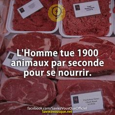 L'Homme tue 1900 animaux par seconde pour se nourrir. | Saviez Vous Que?
