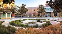 UC Davis West Village, Davis CA