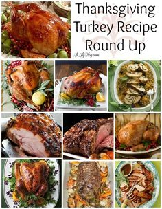 HUGE Round Up of Delicious Thanksgiving Recipes