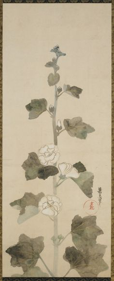 heaveninawildflower:   'White Hollyhocks' (Edo Period). Ink, colour and goldon paper by Ogata Korin (1658-1716), Japan. Gift of Charles Lang Freer. Image and text courtesy Freer Gallery of Art and Arthur M. Sackler Gallery.