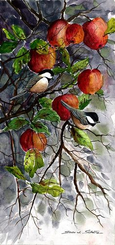 Chickadees in Apples by Steven W. Schultz