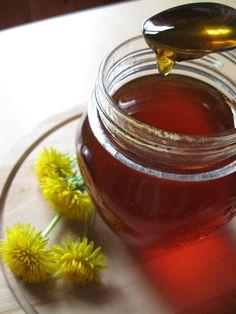 Gelatina di fiori di tarassaco, o miele di tarassaco, ricetta per la realizzazione in casa di un finto miele con erbe spontanee dalle proprietà depurative.