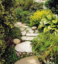 garden path.  sooooo beautiful and awesome hostas along the path, along with other great plantings!!