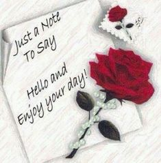 Hello sister ,l want to say good afternoon and enjoy your day♥★♥.