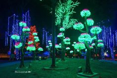 I-City: Glowing Garden in Malaysia