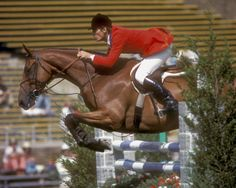 Jet Run was one of the most successful show jumpers of his era, experiencing much of his success with show jumper turned Thoroughbred racehorse trainer Michael Matz.