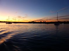 Noosa River & Canal Cruises - Sunset Cruise
