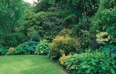 25 Ideas For Shade Gardens