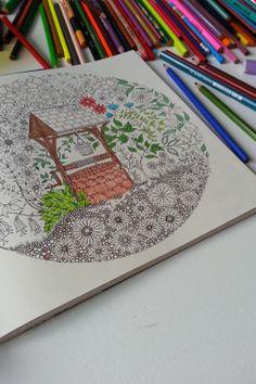 """Kleur en zoekboek 'Mijn geheime tuin"""" http://www.hipgemaakt.nl/a-30362790/boeken-amp-magazines/kleur-en-zoek-boek-mijn-geheime-tuin/"""