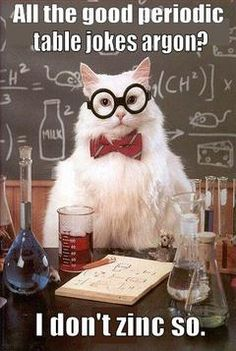 The 34 best mr crooks science class images on pinterest gym chemistry cat geology rocks but biology is where the fun is urtaz Choice Image