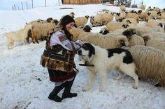 Bucovina Romania Romania Travel, Moldova, My Heritage, Globe, Culture, Beautiful, Romania, Speech Balloon