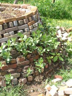 tuinbonen in de groentetoren op de permacultuur proeftuin in Twello Forest Garden, Organic Farming, Dream Garden, Permaculture, Firewood, House Plants, Homesteading, Stepping Stones, Brick