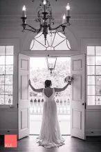 #MoJo #WeddingPhotographer #CharlestonWeddingPhotography #LowndesGrove #Plantation #CharlestonWedding #WeddingPhotographer #CouplesPortraits #DestinationWedding #CaptureTheMoment #charlestonweddinguide #charlestonbride #southernbride #lowcountrywedding