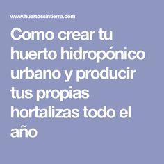 Como crear tu huerto hidropónico urbano y producir tus propias hortalizas todo el año