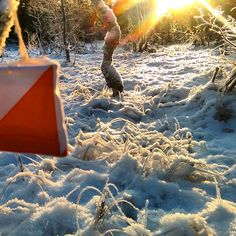 Awesome picture: snow and sun Im Crazy, Why People, Just Love, Personality, Oriental, Canada, Snow, World, Healthy