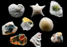 How Sand Looks Magnified Up To 300 Times - photos by Dr. Gary Greenberg... idea for a custom guitar
