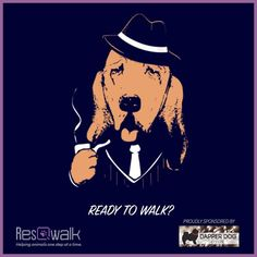 New week, new donation pool! Walk and help your favorite rescue or shelter earn part of $850. Ready. Set. Go! www.resqwalk.com