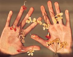 scan hands & flowers.  add cut out type.