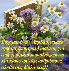 Kalo Mina Mina, Picture Quotes, Beautiful Pictures, Herbs, Plants, Greek, Pretty Pictures, Herb, Plant