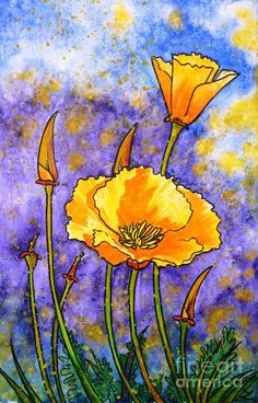 California poppies Painting by Zaira Dzhaubaeva - California poppies Fine Art Prints and Posters for Sale