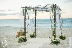 Pepper Key Stacie: Driftwood Wedding