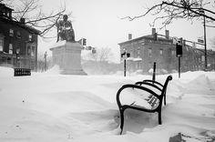 Longfellow/Snow  Portland