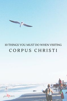 10 Things you must do when Visitin' Corpus Chrisiti . Enjoy Corpus Christi like the locals do!