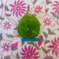 «Feuille volée au Mehrangarh fort de Jodhpur #flowleaf2015 #29octobre #jodhpur #onestenindejenrevienspas» Oct 29, Jodhpur, Instagram Posts, Home Decor, Homemade Home Decor, Interior Design, Home Interiors, Decoration Home, Home Decoration