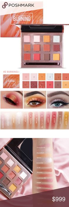 Beauty Essentials Focallure Pure Matte Eye Shadow Palette Earth Color Shadows 18 Colors Shades Palette Natural Eye Make Up To Have Both The Quality Of Tenacity And Hardness