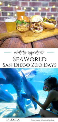 What you need to know before attending SeaWorld San Diego Zoo Days including ticket inclusions, open attractions, and more. Wine Festival, Food Festival, Impossible Burger, Flying With Kids, Bottlenose Dolphin, Disney California, San Diego Zoo, Four Seasons Hotel, Sea World