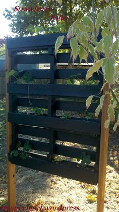 PALLET PROJECT: Pallets with Strawberries « nwgreengirl