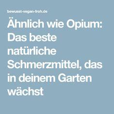 Ähnlich wie Opium: Das beste natürliche Schmerzmittel, das in deinem Garten wächst
