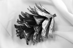 Bring the outdoors inside with this timeless pinecone.  See this piece or create your own from Maker Cherie Stielow at: www.custommade.com #metal #pinecone #custommade