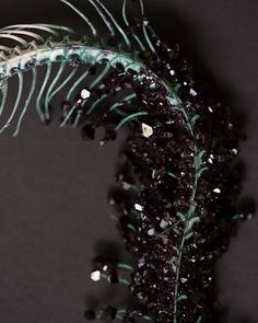 A close up shot of this crystallized snake skeleton I made for my last solo…