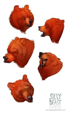 Bear concepts - Silly Beast Illustration