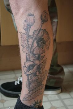 i love poppies, and tattoos that look like old botanical illustrations