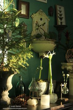 Green botanical home style. Christmas time at Romppala.blogspot.fi