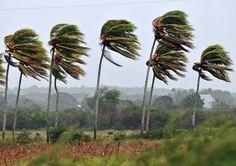 Vientos podrían alcanzar hasta 100 km/h por empuje frío