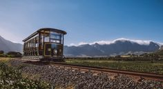 The best way to visit the Franschhoek Valley. The Wine Tram hop-on hop-off tour in an  open-side tram and open-air tram-bus. Learn about the history of Franschhoek and its wine cultivation; enjoy wine tastings and amazing views of the valley and vineyards. Includes stop overs at wine estates #Franschoek #southafricanwines #Winelands.