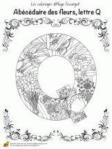 abecedaire belles fleurs a lettre q