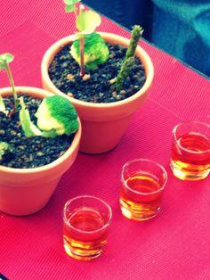 Salada da Horta + Moscatel do Douro