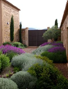 Have to go with xeriscaping and low water in the cottage garden. Like these plants in the Jardin Toledo Gravel garden, xeriscaping, dry garden, mediterranean garden. Tuscan Garden, Garden Cottage, Italian Garden, Mediterranean Garden Design, Mediterranean Style, Tuscan Style, Mediterranean Architecture, Italian Courtyard, Provence Garden